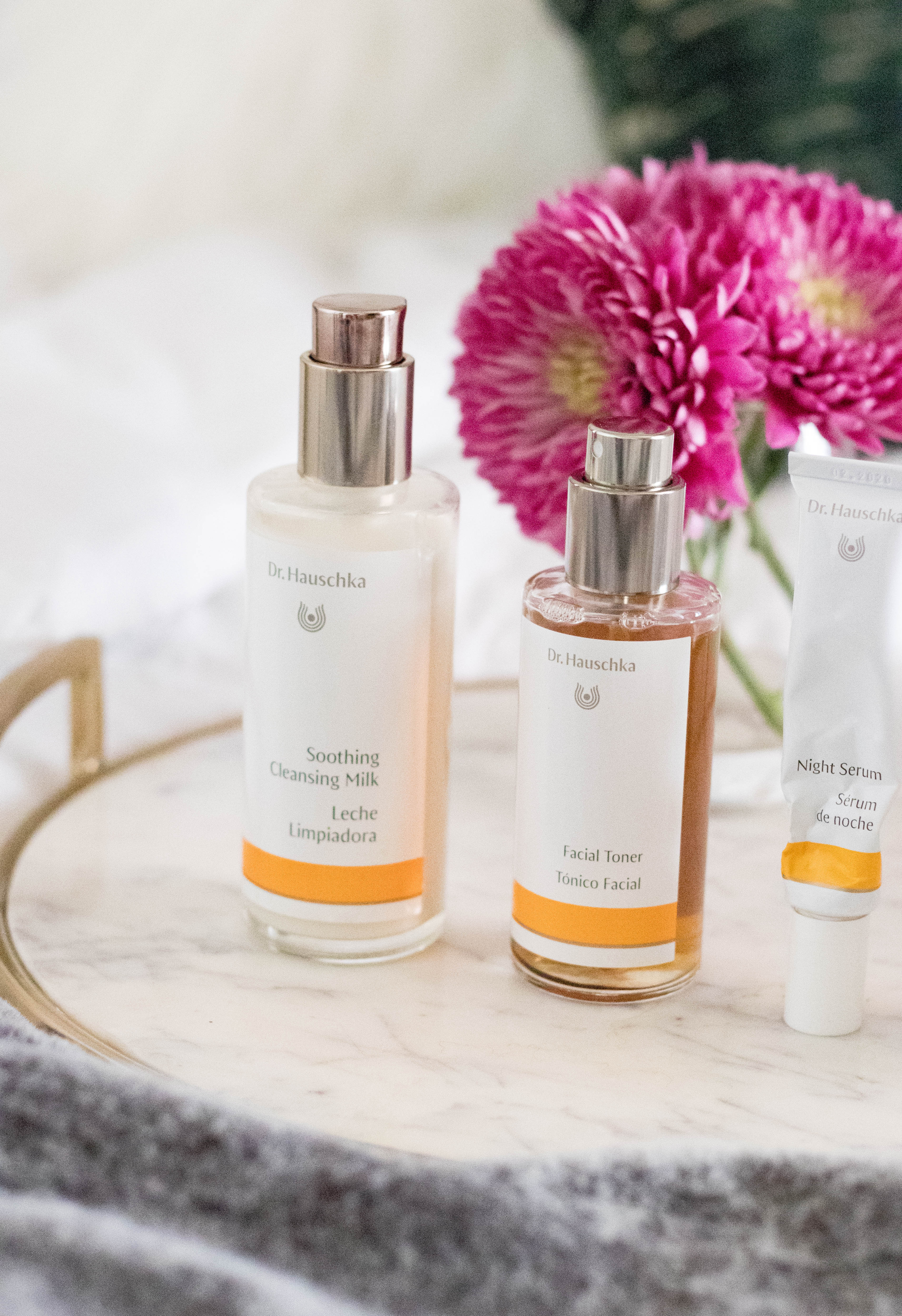 dr hauschka skincare routine #cleanbeauty #skincare #naturalskincare