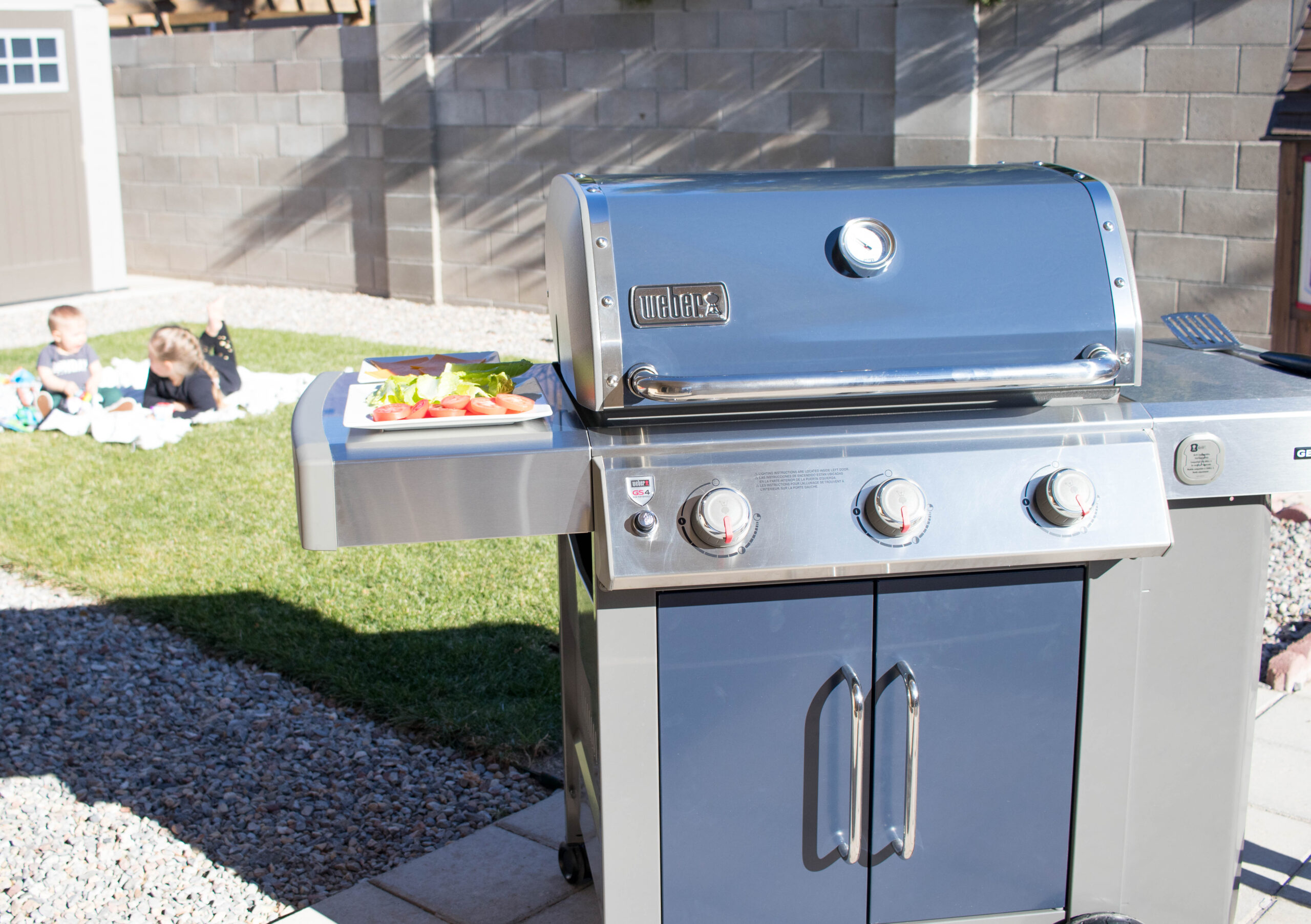 weber grill from ace hardware #mylocalace #acehardware #webergrills